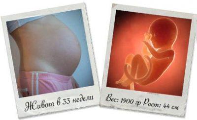 33 34 недели беременности
