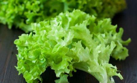 Как хранить листья салата