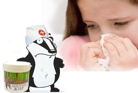Как применять барсучий жир для лечения детей